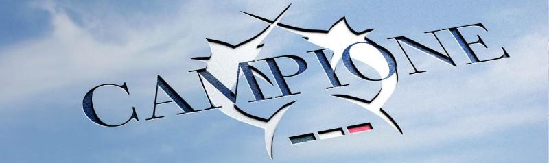 media/image/logo_sky.jpg